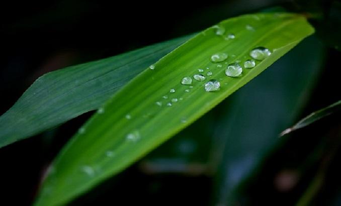 梅雨の体調不良,眠気,自律神経